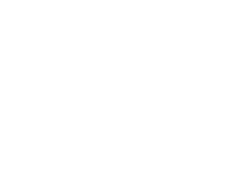 olio-terre-di-san-felice-icona